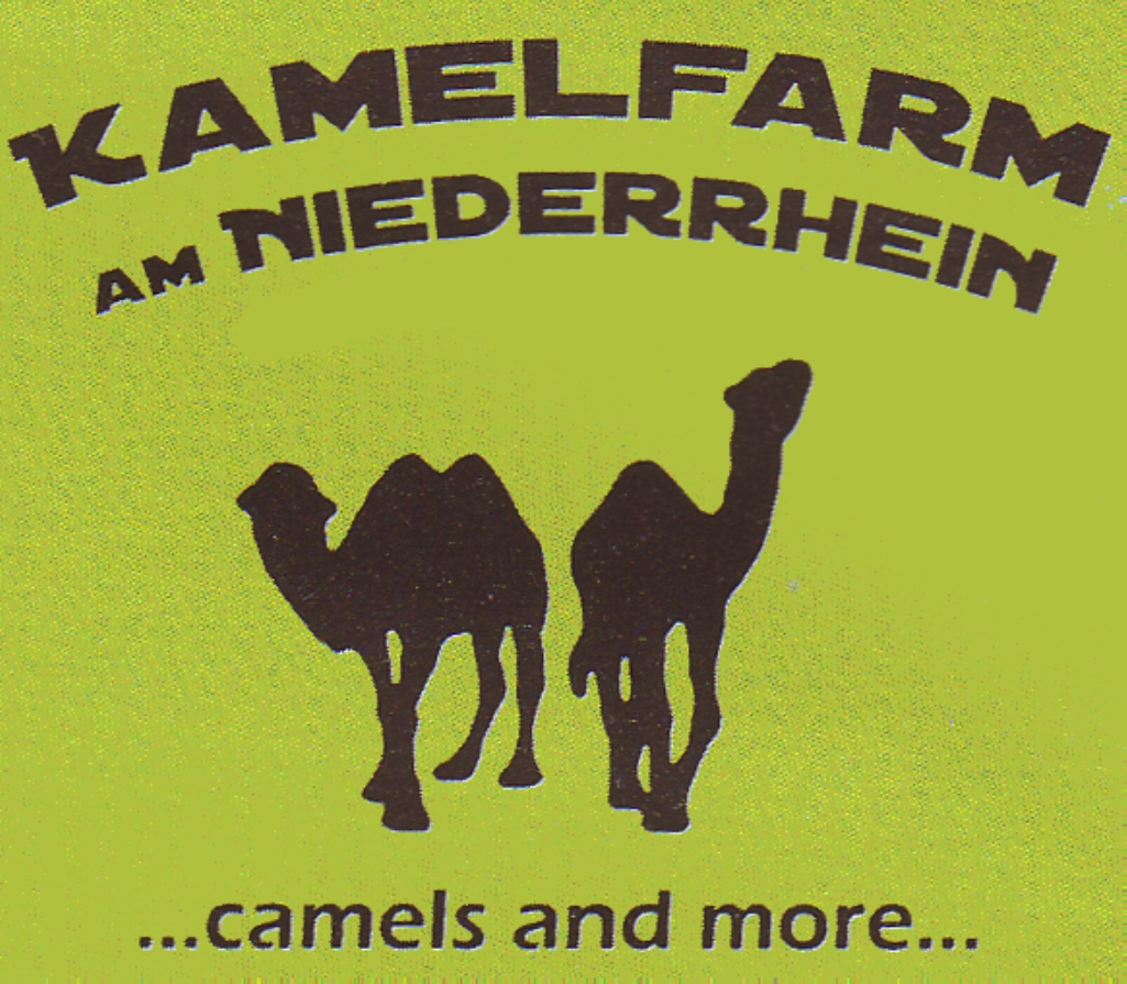Kamelfarm am Niederrhein