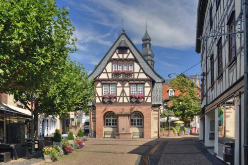 Altes Rathaus mit Brunnen